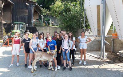 High Tech und Kühe: Die achten Klassen des Gymnasiums auf Exkursion am Bauernhof